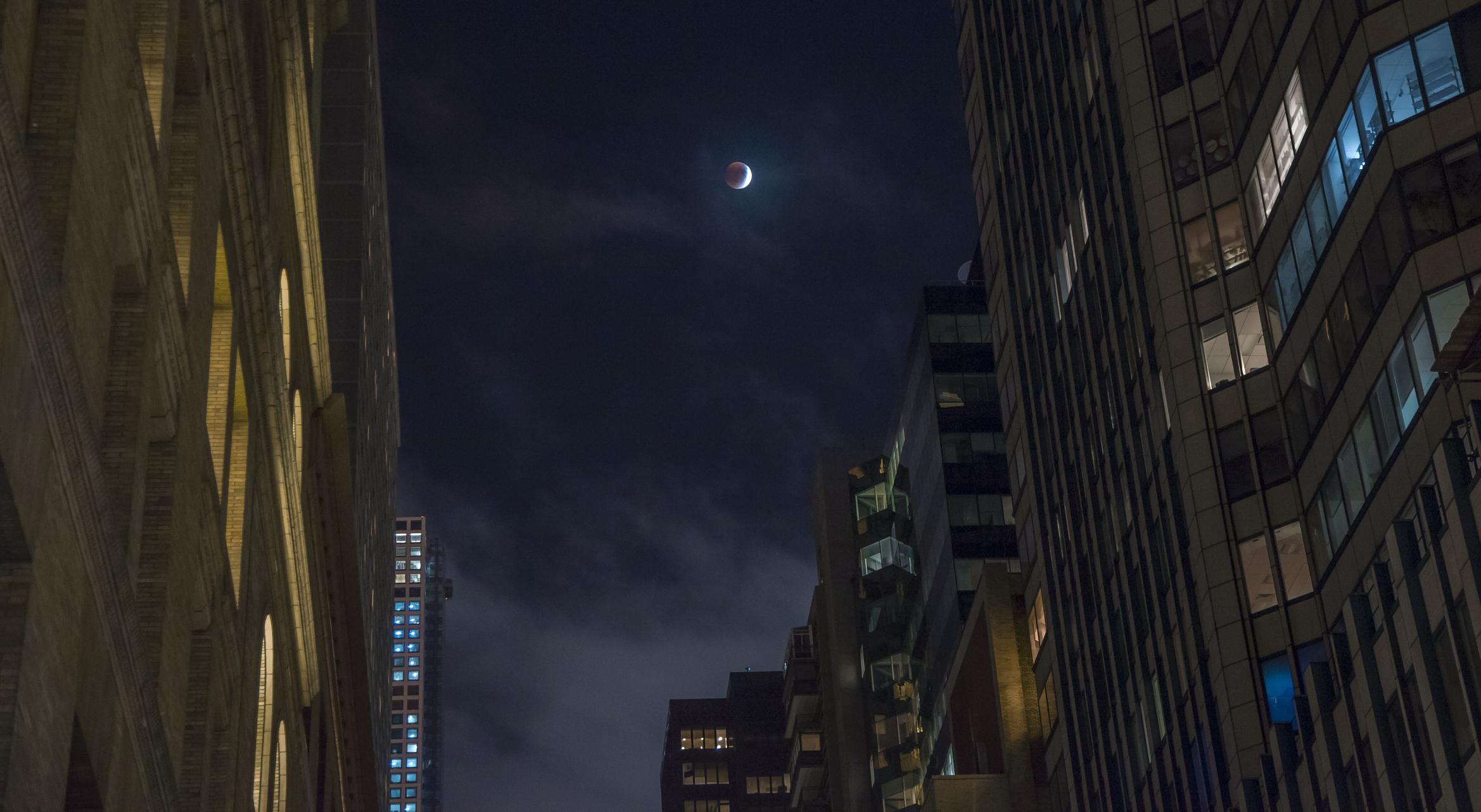 Solar Eclipse - NYC